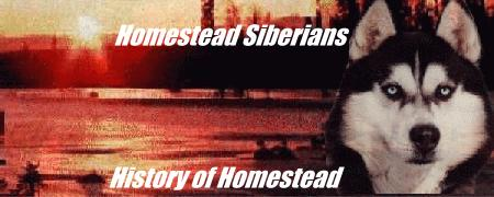 History of Homestead